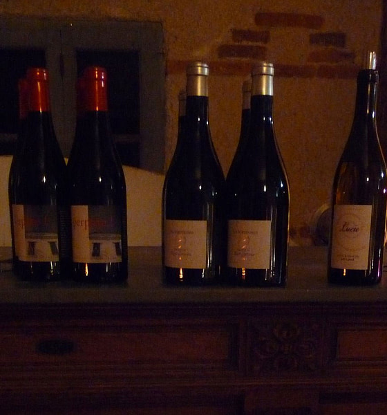 Repas Accord mets et vins au château St-Louis Fronton